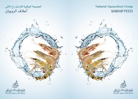 Shrimp Feed | National Aquaculture Group (NAQUA) | Scoop.it