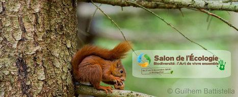 Salon de l'écologie de Montpellier en région Occitanie | Initiatives et agenda environnement | Scoop.it