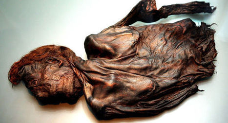 New bog body discovered in Meath | Boyne Valley Heritage | Scoop.it