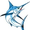 Kona Fishing Guide (konafishing) | Kona Fishing Guide | Scoop.it