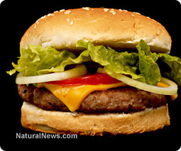 Fast food chains struggle in wake of healthy eating trend | Nutrition Dos and Don'ts | Scoop.it