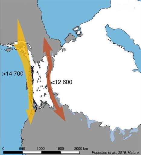 Ciência - Os primeiros humanos não se espalharam pelas Américas por terra, diz nova teoria | History 2[+or less 3].0 | Scoop.it
