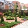 Building a beautiful garden