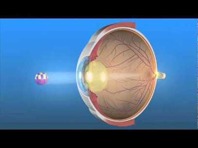 Exercise for Eyes and Vision - Eye M.D.-approved information from EyeSmart | Healthy for Life | Scoop.it