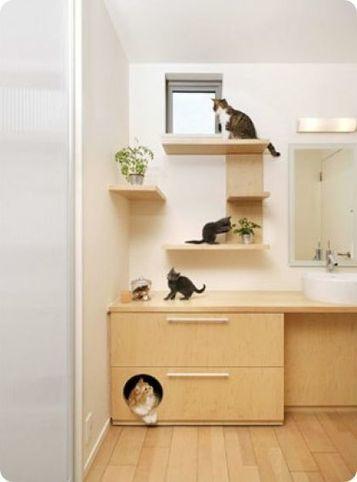 Una casa diseñada para gatos   Gatos domésticos   Cajón de sastre   Scoop.it