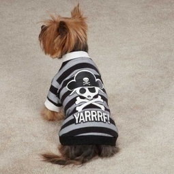 Yarrrf! Dog in a Pirate Shirt | For Pet Lovers | Scoop.it