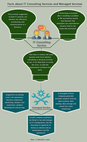 Facts-about-IT-Consulting-Services-and-Managed-Services | AndreaMary | Scoop.it