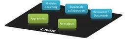 Comment produire des modules e-learning (I) le LMS - Le blog du E ... | FLE, TICE & éducation aux médias | Scoop.it