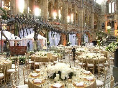Wedding in the Natural History Museum - London, UK.   Magical Destination Wedding Venues   Scoop.it