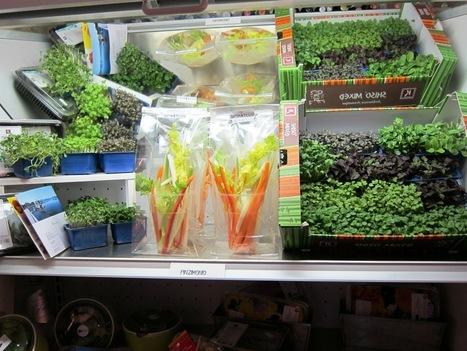 "Aromaticus – ""Urban Farming Grow Shop""   Tavole Romane Food Tours in Rome   Vertical Farm - Food Factory   Scoop.it"