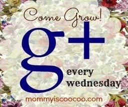 Grow your Google+ Circles   SEO   Scoop.it