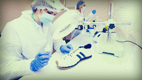 What is forensic science-Forensic scientists: A career in the crime lab   Forensic Science   Scoop.it