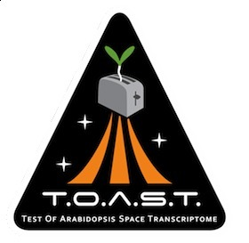 Botany experiment will try out zero gravity aboard space station (Dec. 17, 2012) | Erba Volant - Applied Plant Science | Scoop.it
