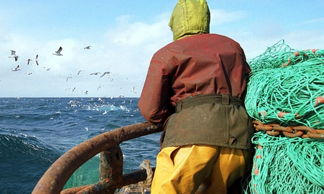 Bottom trawling: how to empty the seas in just 150 years | All about water, the oceans, environmental issues | Scoop.it