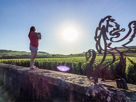 Mes premiers pas en région de Bourgogne que j'ai adorée | Voyages | Scoop.it