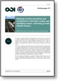 Mapping current incentives and investment in Viet Nam's water and sanitation sector: lessons for private climate finance | International aid trends from a Belgian perspective | Scoop.it