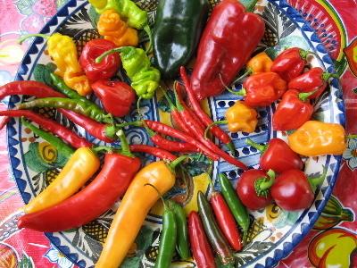 ¡Picoso, pero sabroso! 10 mitos y realidades sobre el chile | La Miscelánea | Scoop.it