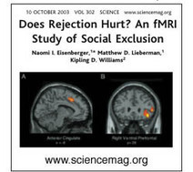 Does Rejection Hurt? An fMRI Study of Social Exclusion   Social Neuroscience Advances   Scoop.it