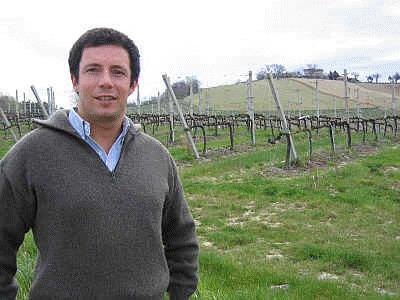 Le Marche Wine Excellence: Marotti Campi Morro d'Alba | Wines and People | Scoop.it
