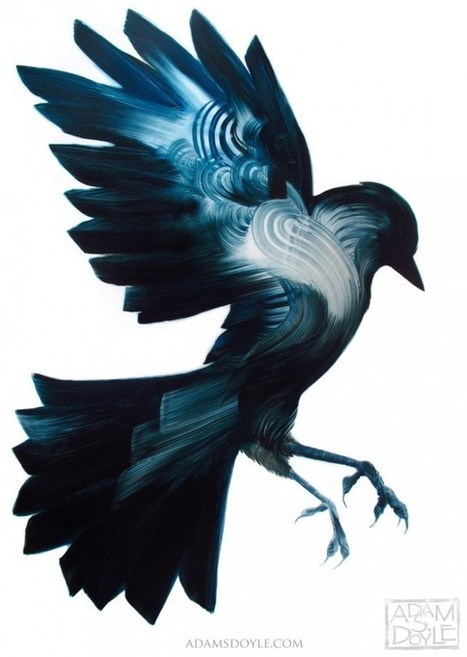 Bird Paintings by Adam S. Doyle | Arts graphiques | Scoop.it