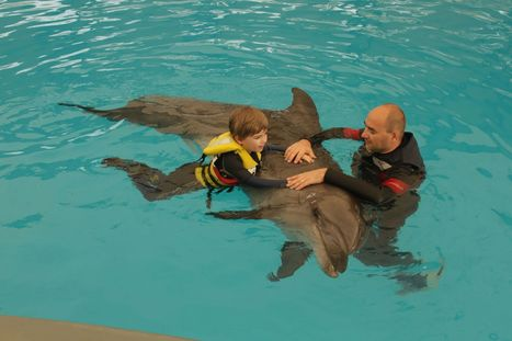 | Home | Dolphin Therapy – Antalya | Animal Assisted Therapy - Aspect 3 | Scoop.it