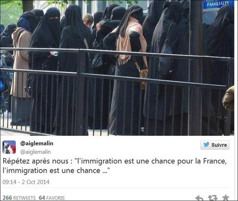 Femmes en niqab devant la CAF : Photo truquée ! - Islam&Info   Réseaux sociaux numériques   Scoop.it