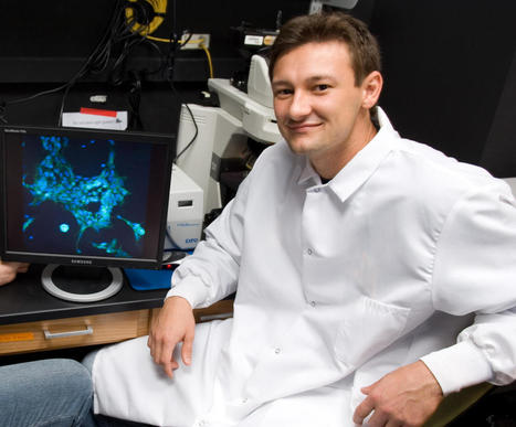 Microparticle Delivery Trick Could Lead to 3-D Tissues   Biomedical Beat   Scoop.it