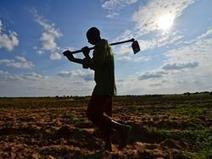 Les USA et l'UE votent contre une déclaration de l'Onu en faveur du respect des droits des paysans. | Questions de développement ... | Scoop.it