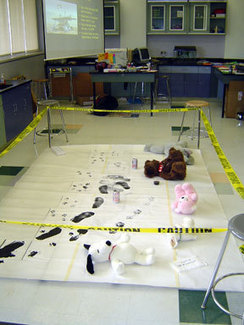 Forensic Science for Kids | lifehereonearth | Scoop.it