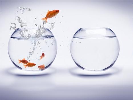 13% des directeurs achats rejoignent la direction générale - Décision Achats | COMPETENCES ACHATS | Scoop.it