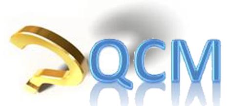 Créer des QCM avec vue progression et résultats sur ordinateur, portable ou tablette | | Pédagogie Idées et techniques | Scoop.it