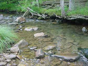 Turbidity Measurements: Tips and Precautions | Water quality | Scoop.it