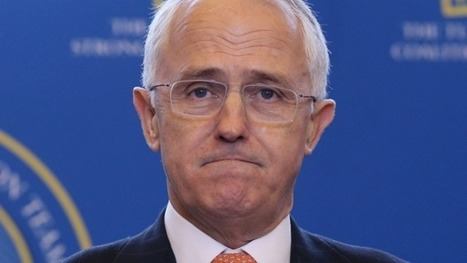 Same-sex marriage plebiscite could be Turnbull government's Brexit | Gay News | Scoop.it