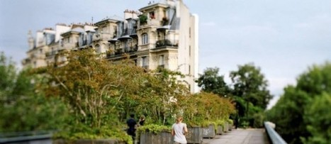 Immobilier : ce qui va changer - Le Point | Juste l'immobilier ! | Scoop.it