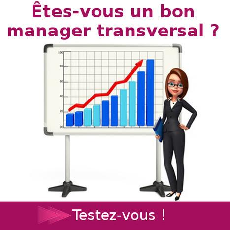 Etes-vous un bon manager en transversal ?   Formation Docendi   Scoop.it