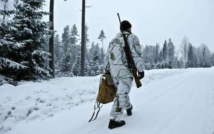 Swedish courts temporarily ban wolf hunting | liu wai  ling | Scoop.it