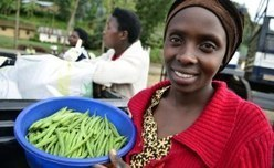 Land Investment Threatens Africans' Rights | BioFuels - Agriculture & Oil Trees | Scoop.it