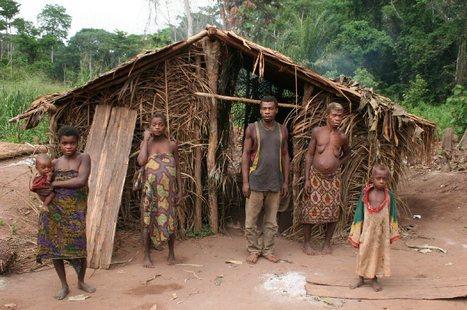 Les pygmées réclament l'accès à l'éducation et aux soins de santé | L'enseignement dans tous ses états. | Scoop.it