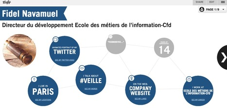 Vizify. Une representation visuelle de vous | Time to Learn | Scoop.it