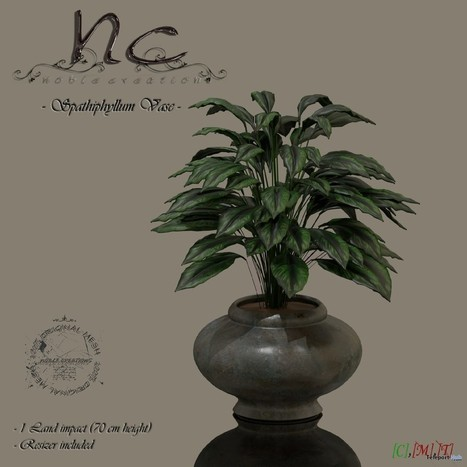 Spathiphyllum Vase Group Gift by Noble Creations | Teleport Hub - Second Life Freebies | Second Life Freebies | Scoop.it