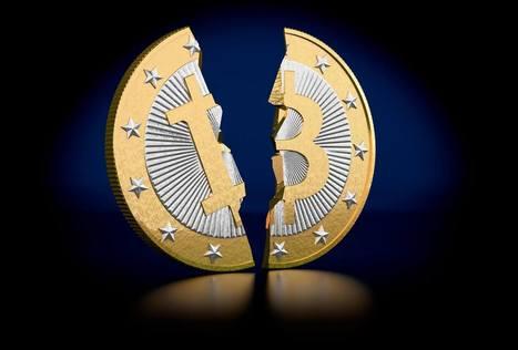Tra 6 mesi arriva l'halving, e dimezzerà i tuoi Bitcoin | Bitcoin | Scoop.it