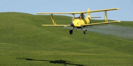 Les pesticides favoriseraient l'autisme | Toxique, soyons vigilant ! | Scoop.it