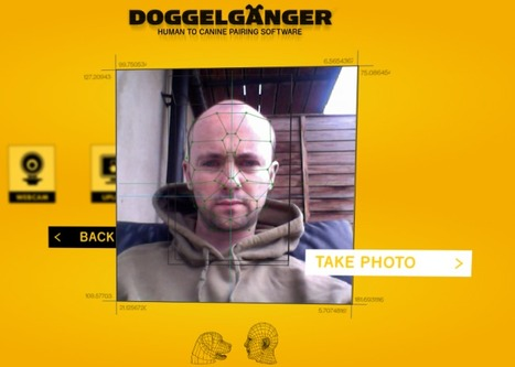 A brilliant new facial recognition campaign for dog lovers from Pedigree chum | All in one - Social Media ROI | Scoop.it