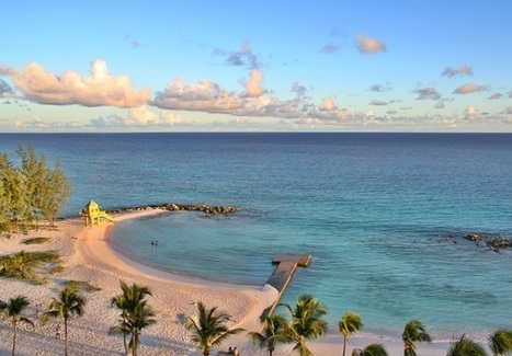 Best Snorkeling In Barbados: Places, Beaches, Map & Tours | Caribbean Charter Flights | Scoop.it