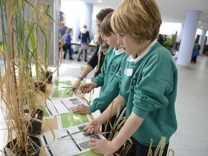 Fascination of Plants Day | Plant Science | Scoop.it