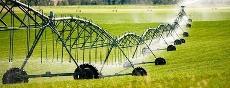 España lidera el ahorro de agua para uso agrario a nivel mundial | Agricultura y Ganaderia | Scoop.it