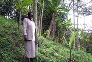 Carbon trading uplifts livelihoods in rural Uganda | New Agriculturist | Climate Smart Agriculture | Scoop.it