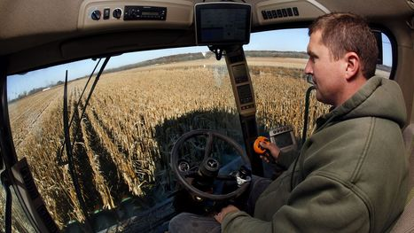 Corn growers face pressure on sustainable techniques - DesMoinesRegister.com   Sustainable Food Production   Scoop.it