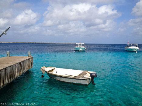 Unforgettable Bonaire   Caribbean Travel Source   Scoop.it