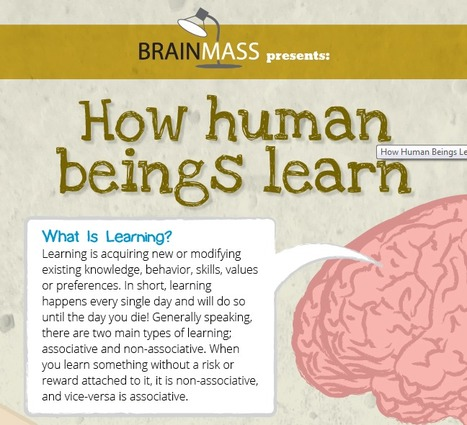 How Human Beings Learn | The BrainMass Edge | edanne | Scoop.it
